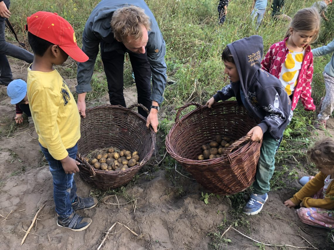 Kinder Kartoffelernte Sarah Wiener